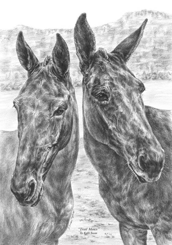 Mule Poster featuring the drawing Trail Mates - Mule Portrait Art Print by Kelli Swan