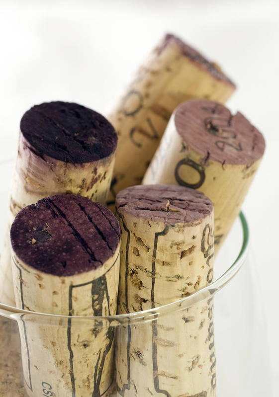 Red Wine Poster featuring the photograph Red Wine Corks by Frank Tschakert