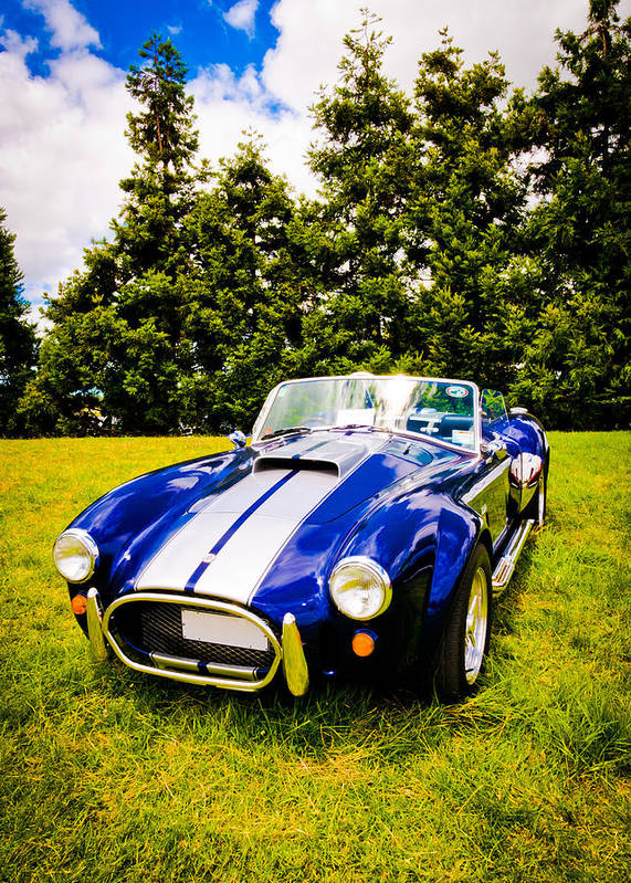 Ac Cobra Poster featuring the photograph Blue Cobra by Phil 'motography' Clark