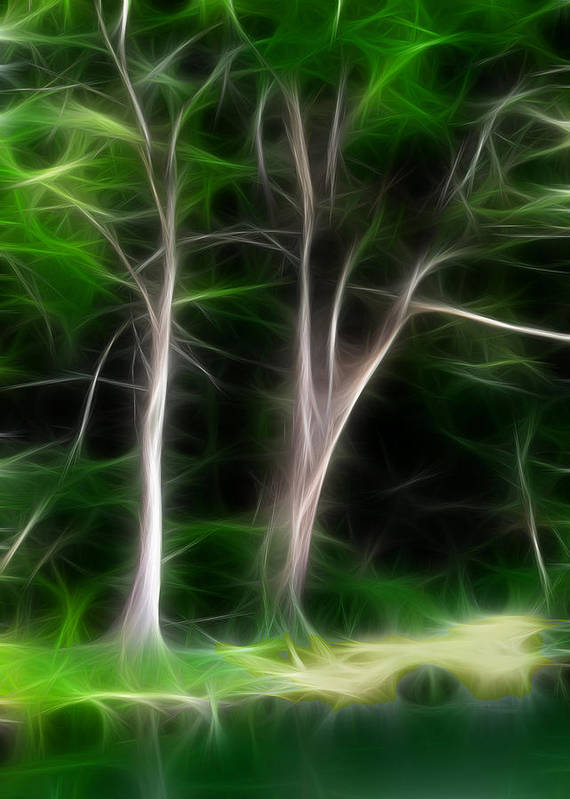 Trees Poster featuring the digital art Greenbelt by Wendy J St Christopher