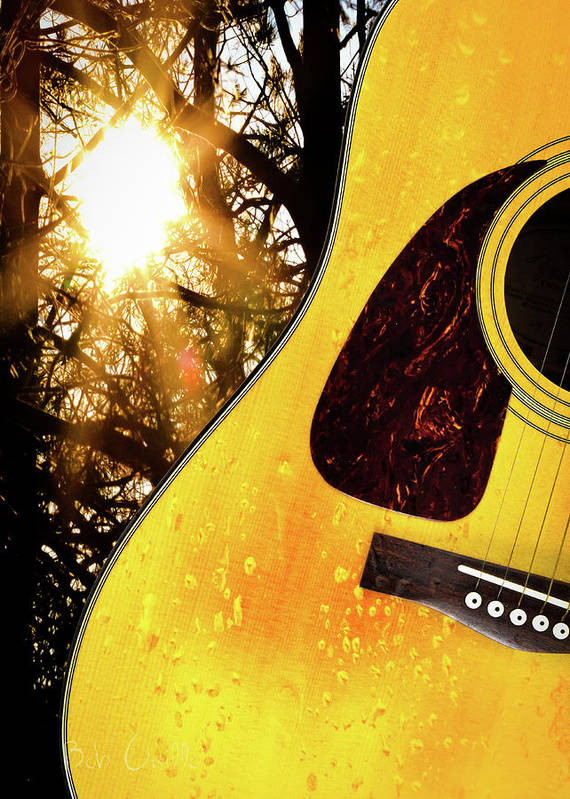 Guitar Poster featuring the photograph Songs From The Wood by Bob Orsillo