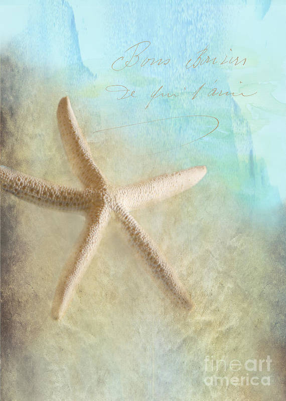 Sea Shell Poster featuring the photograph Starfish by Betty LaRue