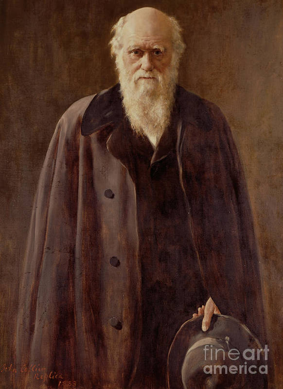 Male; Hat; Coat; White Beard; Scientist; Three-quarter Length; Serious; Science; Medicine; Zoology; Victorian; Pioneer; Evolution Poster featuring the painting Portrait Of Charles Darwin by John Collier