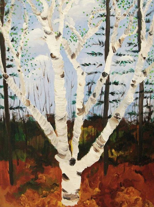 Tree Poster featuring the painting Brightest Birch by Suzanne Marie Leclair