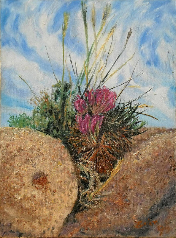 Small Life Sized Garden Of Cactus Flower And Grasses In A Rock Cleft Poster featuring the painting Mini Cactus Garden In Rock by Brian Pinkey