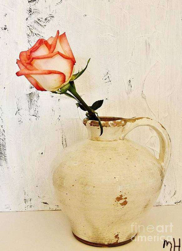 Photo Poster featuring the photograph Peach Trim Rose In Pottery by Marsha Heiken