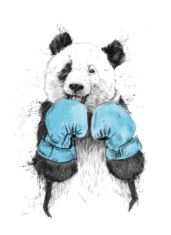 Panda Poster featuring the drawing The Winner by Balazs Solti