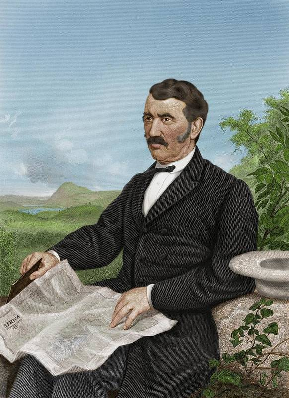 1800s Poster featuring the photograph David Livingstone, Scottish Explorer by Maria Platt-evans