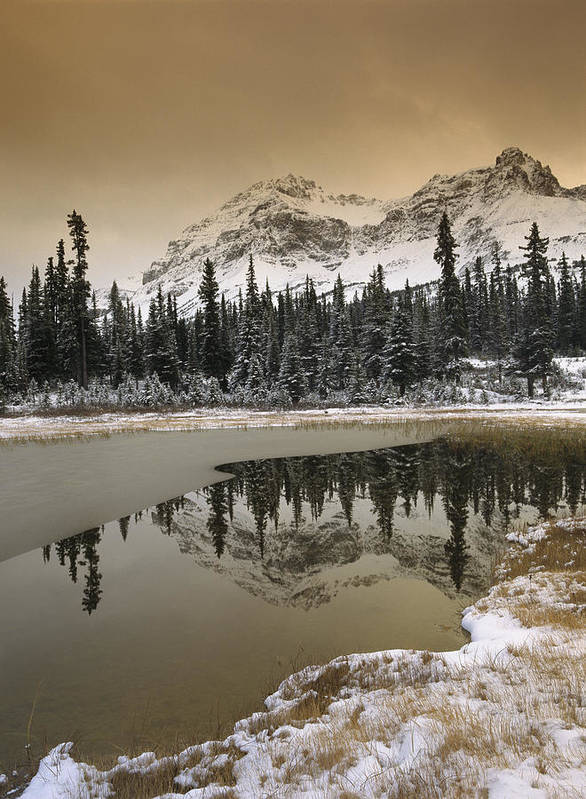 00170867 Poster featuring the photograph Canadian Rocky Mountains Dusted In Snow by Tim Fitzharris