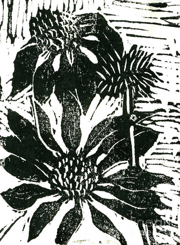 Lino Poster featuring the mixed media Echinacea Block Print by Ellen Miffitt