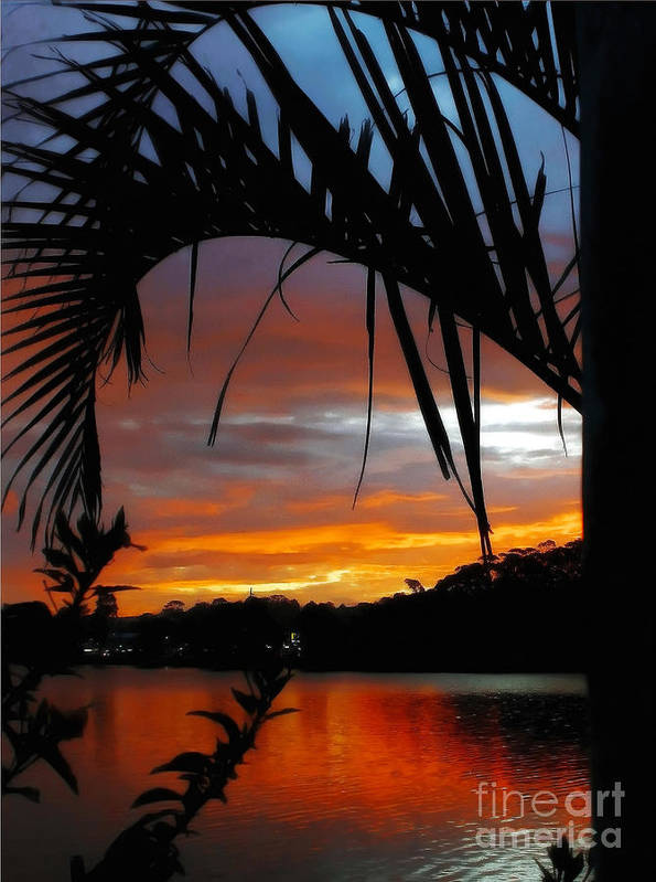 Photography Poster featuring the photograph Palm Framed Sunset by Kaye Menner