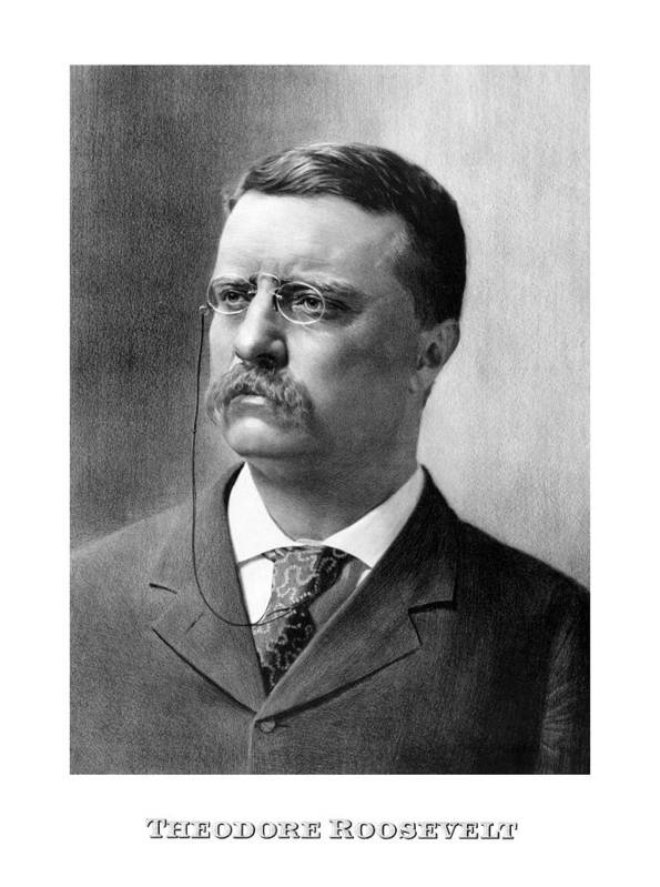 Teddy Roosevelt Poster featuring the drawing President Theodore Roosevelt by War Is Hell Store