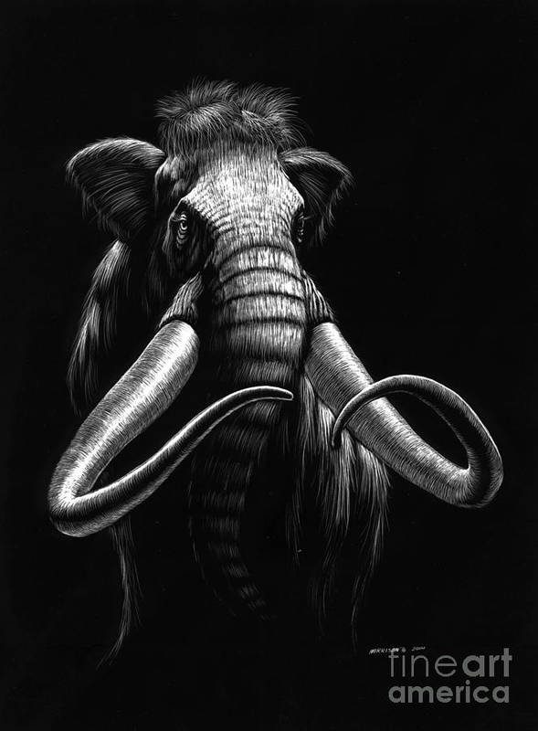 Wildlife Poster featuring the drawing Woolly Mammoth by Stanley Morrison
