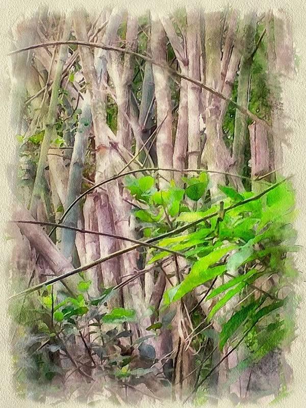 Hong Poster featuring the digital art Bamboo Forest At Lamma Island Hong Kong by Yury Malkov