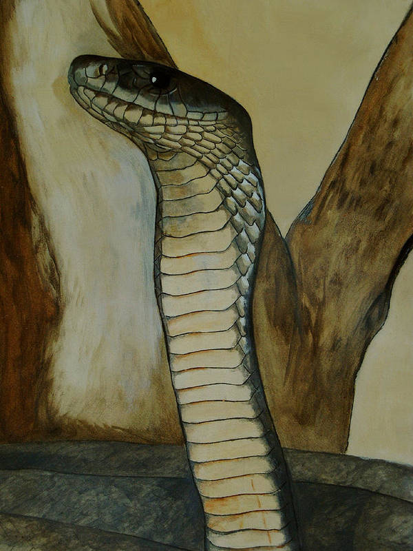 Reptiles Poster featuring the painting Black Mamba by Tracey Beer