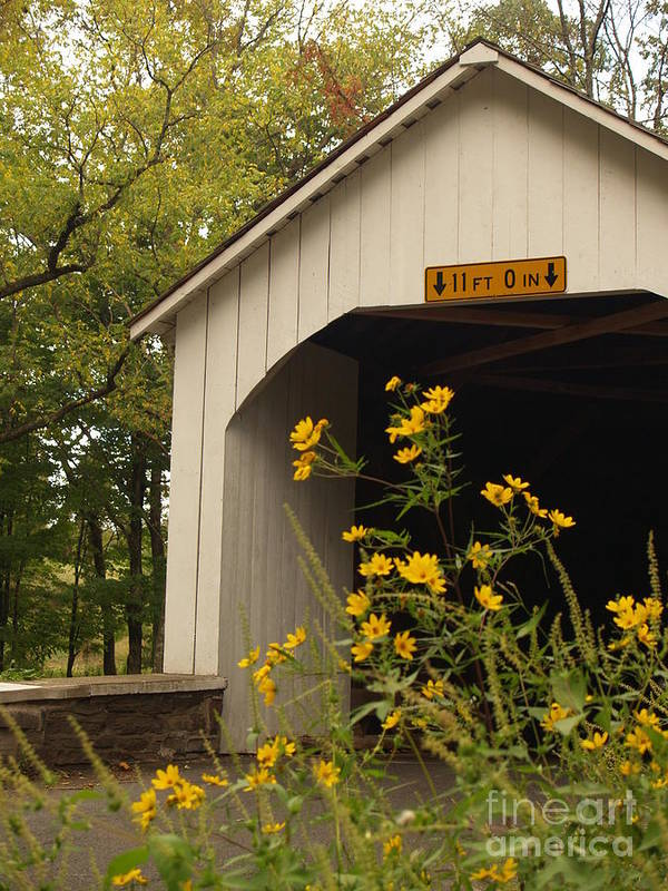 Bridge Poster featuring the photograph Loux Bridge And Tickseed In September by Anna Lisa Yoder