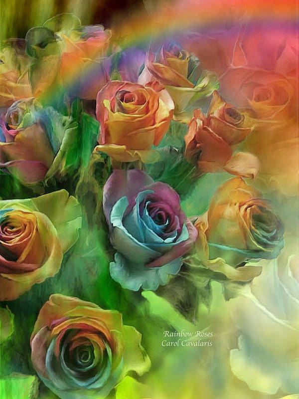 Rose Art Poster featuring the mixed media Rainbow Roses by Carol Cavalaris
