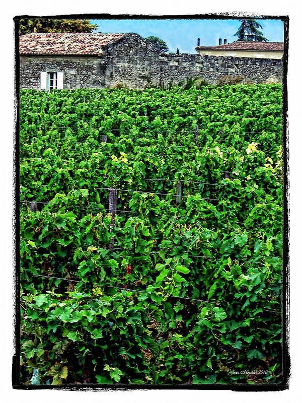 France Poster featuring the photograph St. Emilion Winery by Joan Minchak