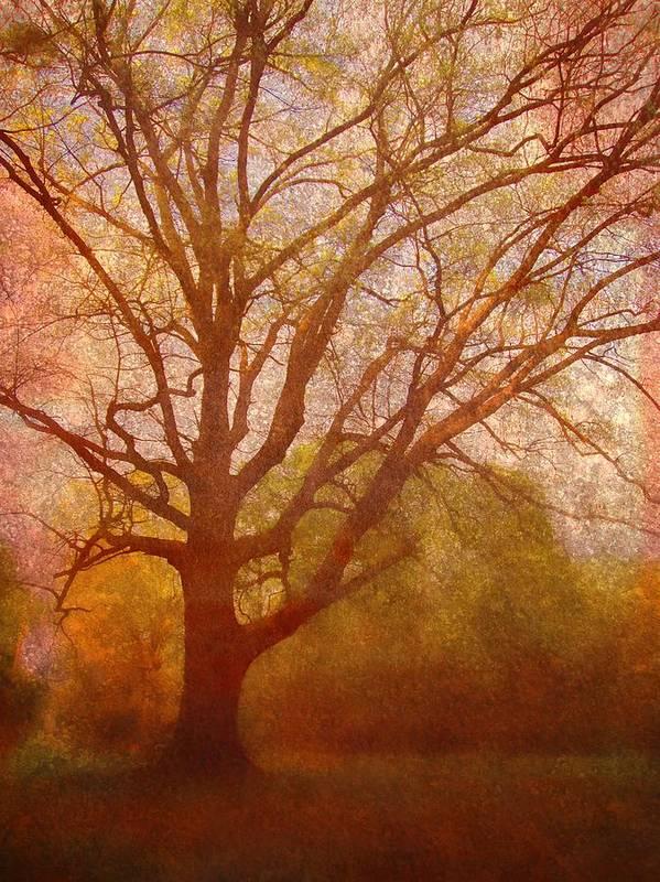 Brett Poster featuring the digital art The Fairy Tree by Brett Pfister