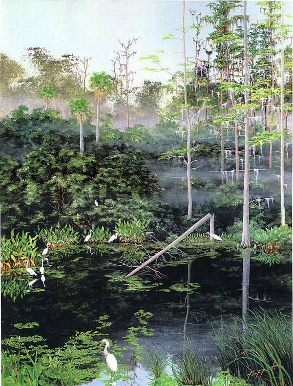 Egrets Poster featuring the painting Reflections 1 by Kevin Brant