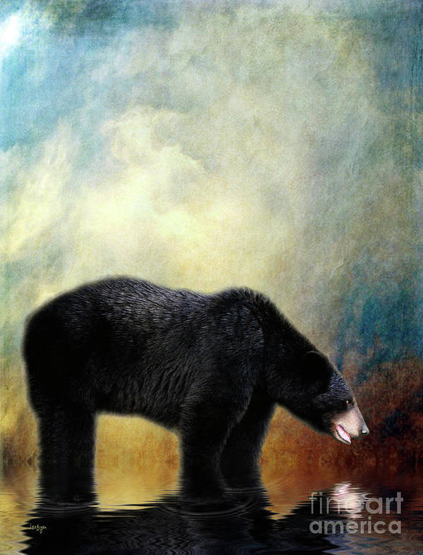 Bear Poster featuring the photograph Little Boy Lost by Lois Bryan