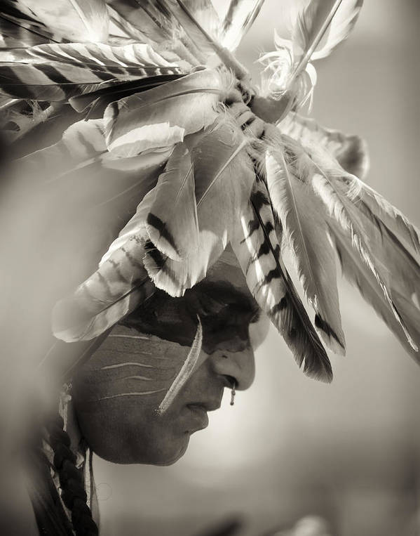 Chippewa Grass Dancer Poster featuring the photograph Chippewa Indian Dancer by Dick Wood