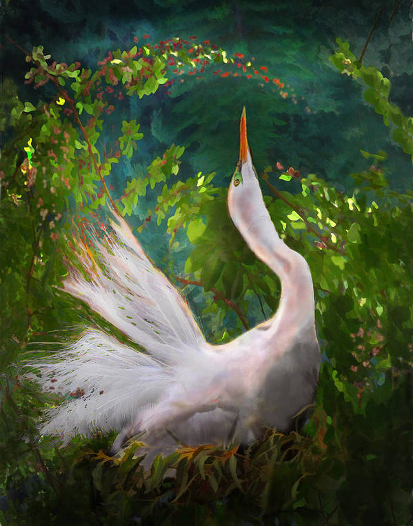 Egret Poster featuring the photograph Flamboyant Egret by Melinda Hughes-Berland
