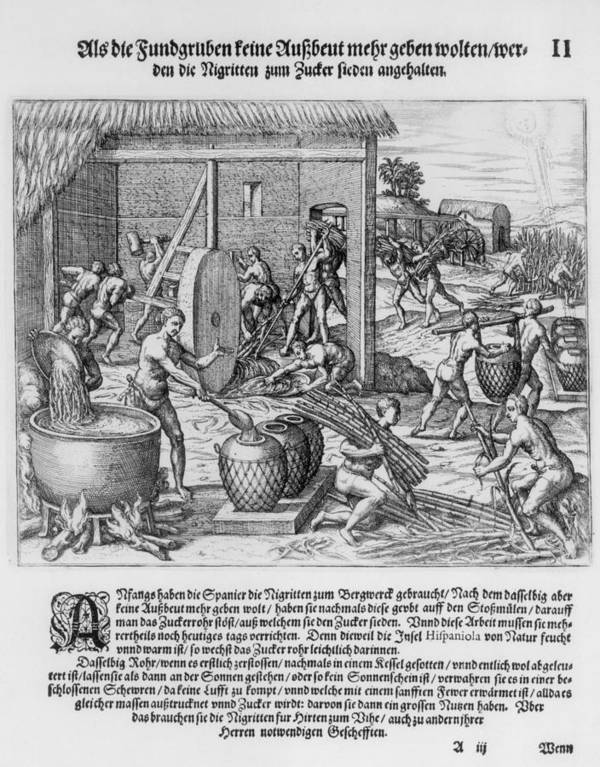 History Poster featuring the photograph African Slaves Processing Sugar Cane by Everett