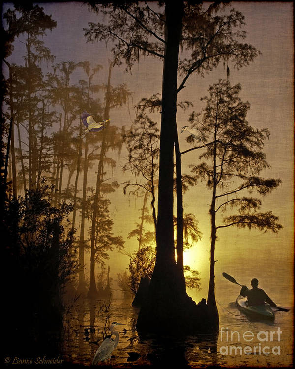 Bayou Poster featuring the digital art Bayou Sunrise by Lianne Schneider