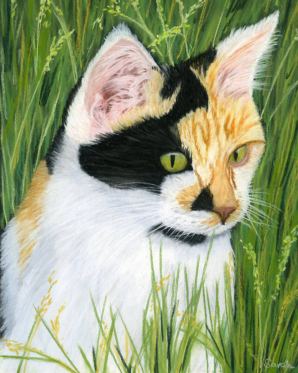 Calico Cat Poster featuring the painting Millie The Adventurer by Sarah Dowson