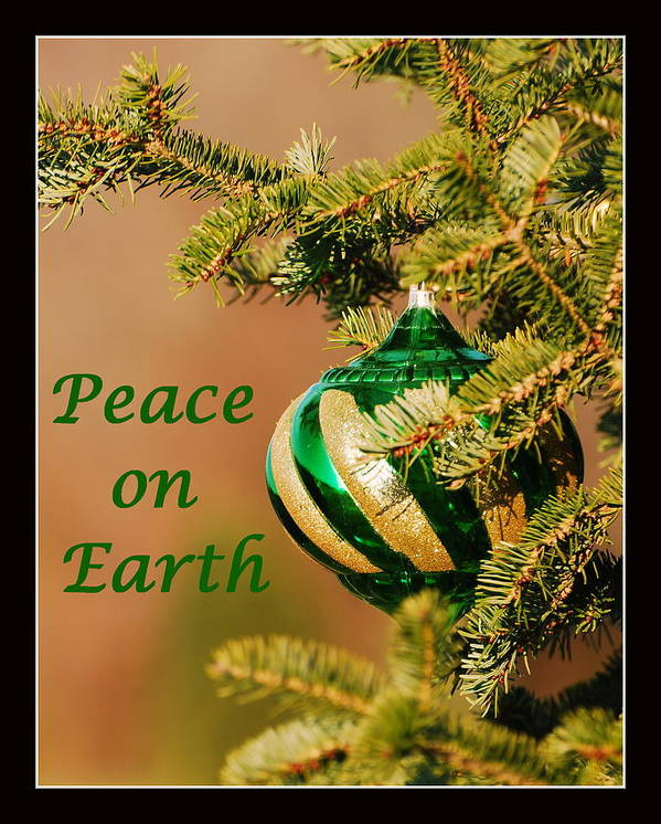 Peace Poster featuring the photograph Peace On Earth by Francie Davis