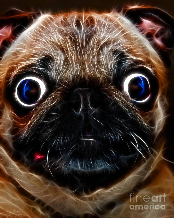 Animal Poster featuring the photograph Pug Dog - Electric by Wingsdomain Art and Photography