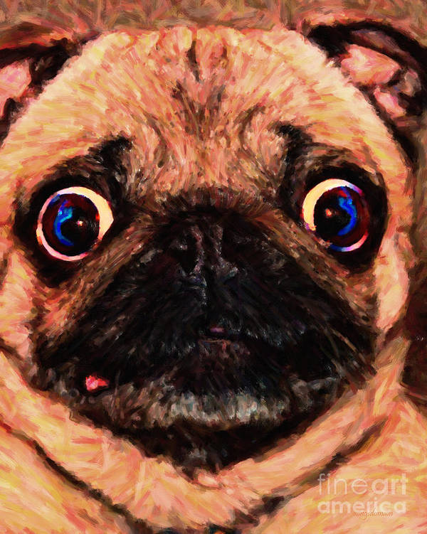 Animal Poster featuring the photograph Pug Dog - Painterly by Wingsdomain Art and Photography