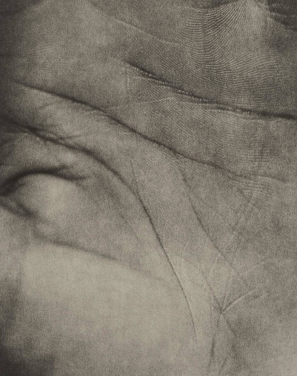 Hand Poster featuring the photograph Palm by Cristina Pedrazzini