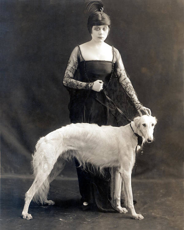 1910s Fashion Poster featuring the photograph Theda Bara With Her Russian Wolfhound by Everett