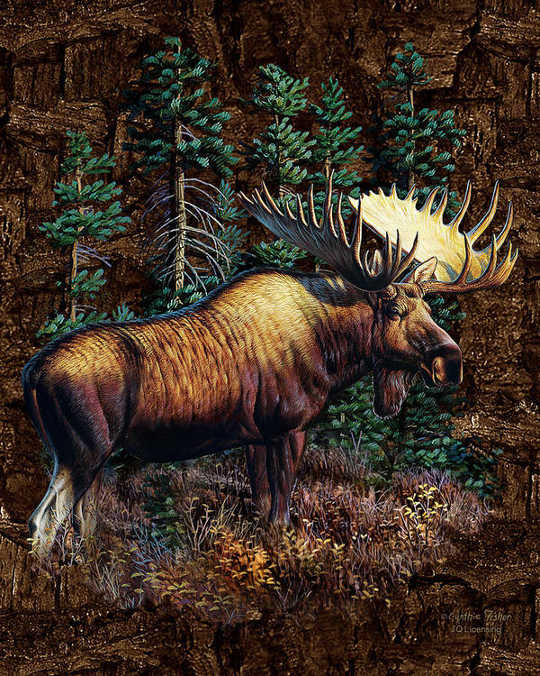 Cynthie Fisher Poster featuring the painting Moose Vignette by JQ Licensing