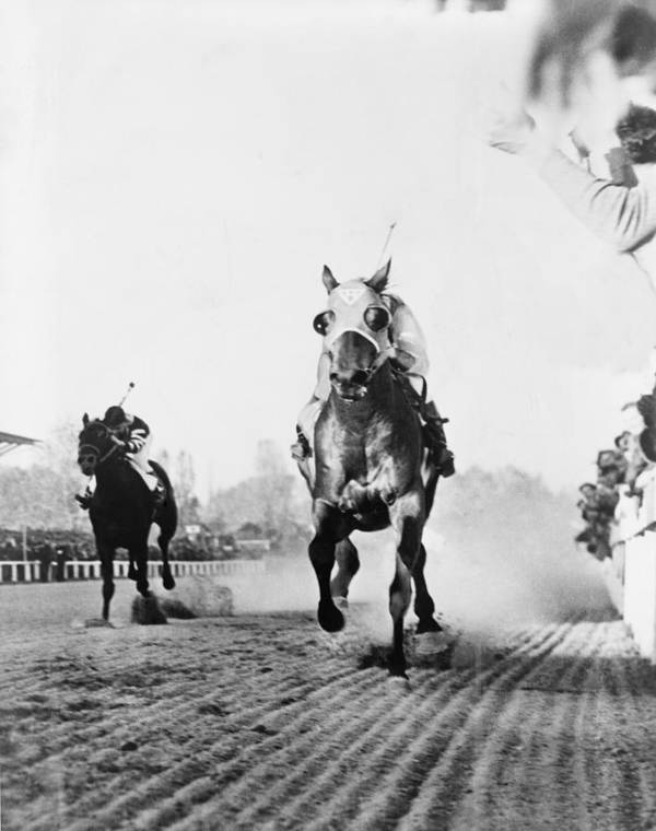 History Poster featuring the photograph Seabiscuit Acrossing The Finish Line by Everett