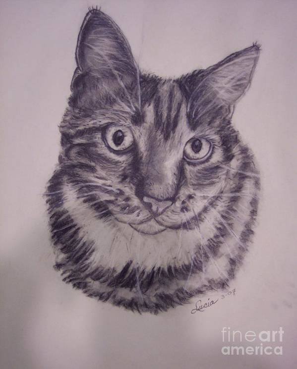 Pet Portraits Cat Poster featuring the painting Pet Portraits by Lucia Grilletto