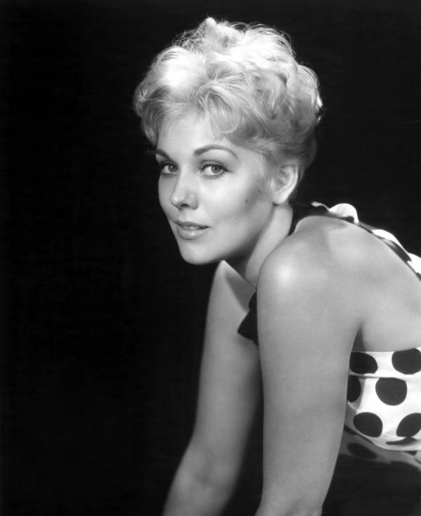 1950s Movies Poster featuring the photograph Picnic, Kim Novak, 1955 by Everett