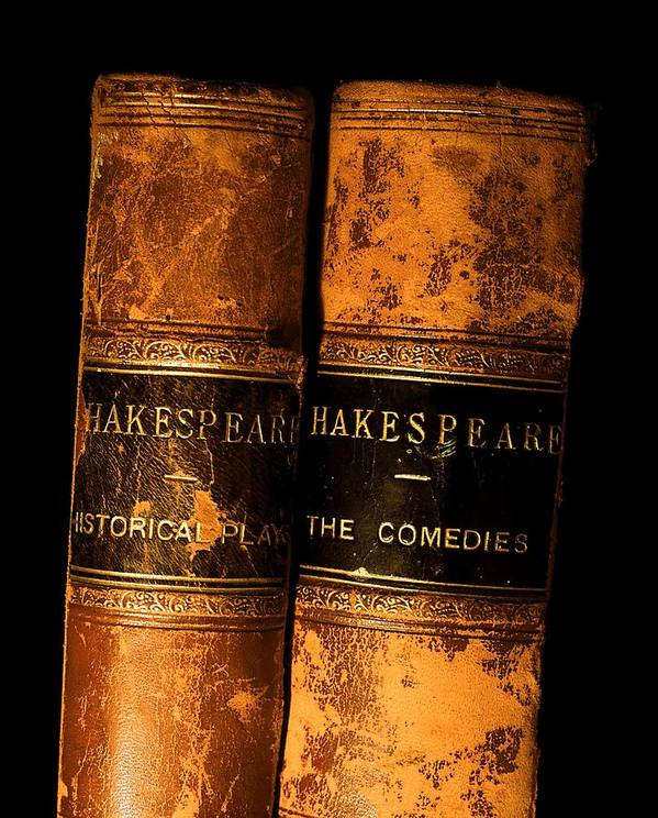 Book Poster featuring the photograph Shakespeare Leather Bound Books by The Irish Image Collection