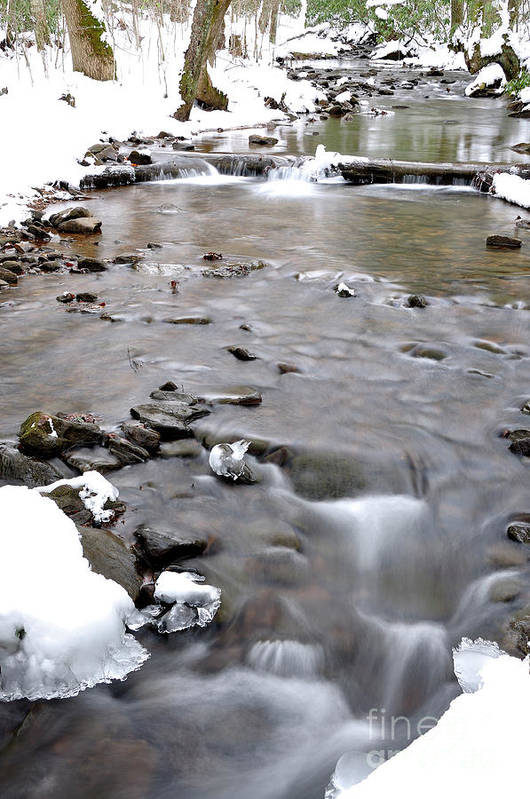 Rushing Mountain Stream Poster featuring the photograph Winter Monongahela National Forest by Thomas R Fletcher