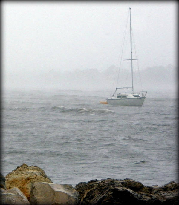 Sail Boat Poster featuring the photograph Rough Waters by Sheri McLeroy