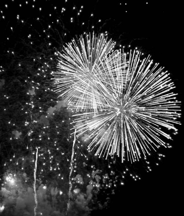 Fireworks Poster featuring the photograph A Day To Celebrate by Julie Lueders