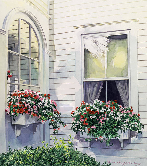 Watercolor Poster featuring the painting Window Boxes by David Lloyd Glover