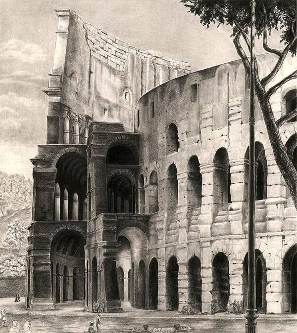 Colosseum Poster featuring the drawing Colosseo by Norman Bean