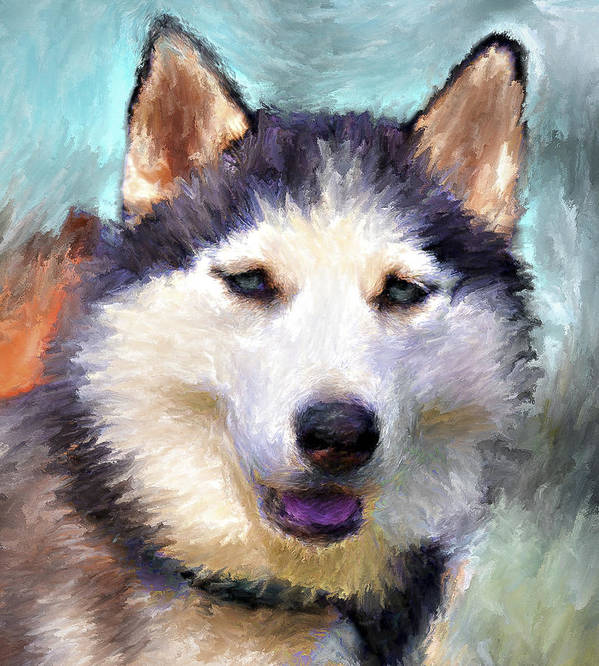 Dog Poster featuring the digital art Huskies by Yury Malkov