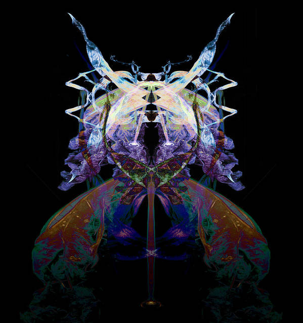 Psychedelic Poster featuring the photograph Samurai Bug Plant by David Kleinsasser