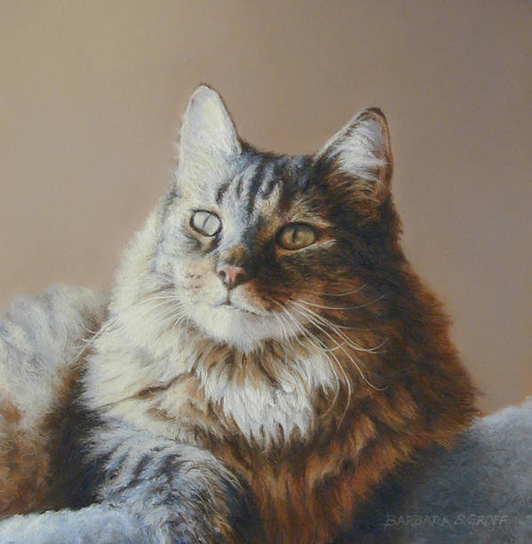 Cat Poster featuring the painting Alexi Maine Coon by Barbara Groff