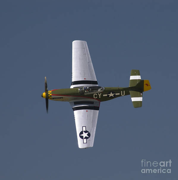 P-51 Poster featuring the photograph P-51 Gunfighter by Tim Mulina