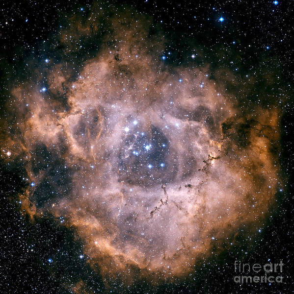 Astronomy Poster featuring the photograph The Rosette Nebula by Charles Shahar